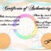 studio_na_koledku-certifikat